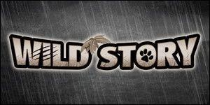 Musée Wild Story